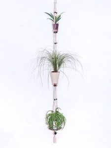 suspension 3 plantes