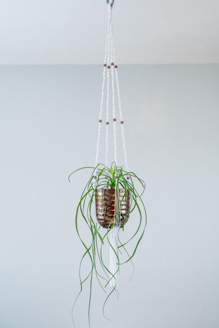 suspension macram plante bymadjo 024 cobanos d co. Black Bedroom Furniture Sets. Home Design Ideas