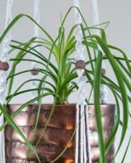 suspension plante-bymadjo-10