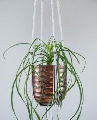 suspension plante-bymadjo-11