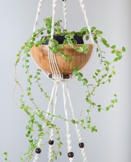 suspension plantes-bymadjo-26