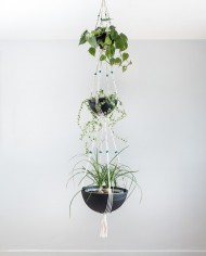 suspension plantes-bymadjo-39