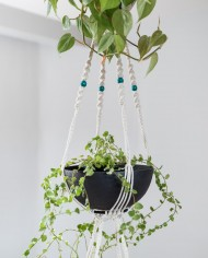 suspension plantes-bymadjo-41