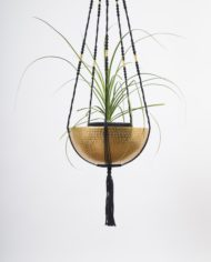 suspension-plante-bymadjo-29