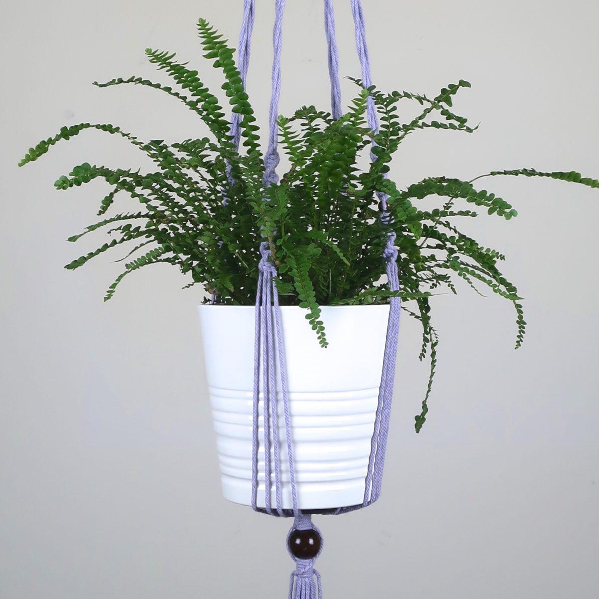 suspension de plante en macramé