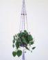 porte plante en macramé