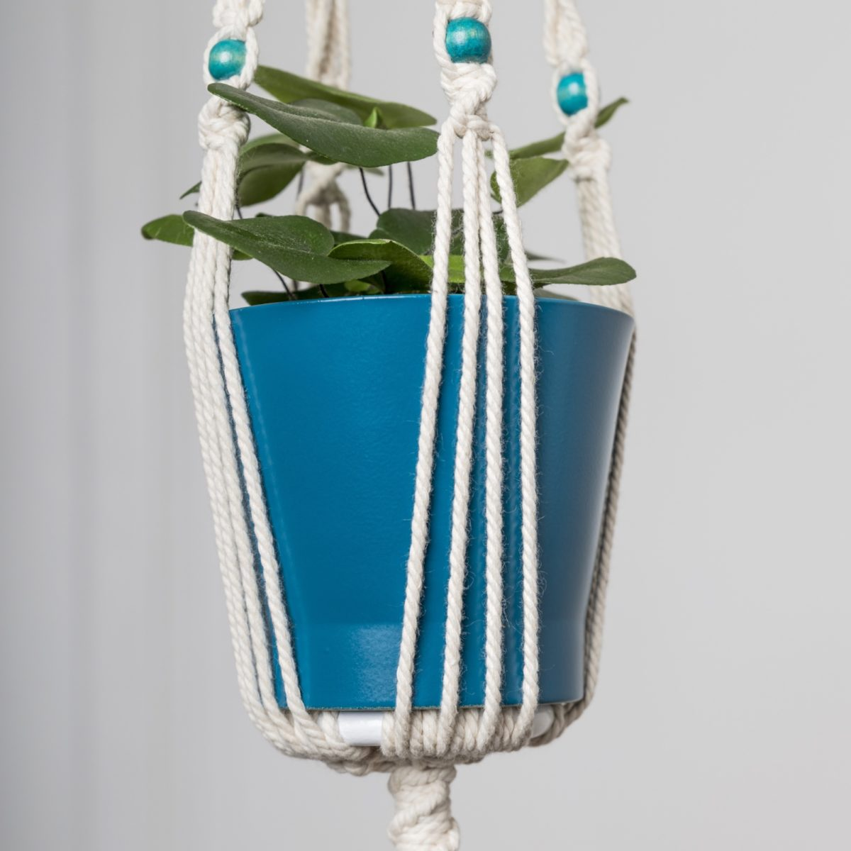 suspension plante macramé