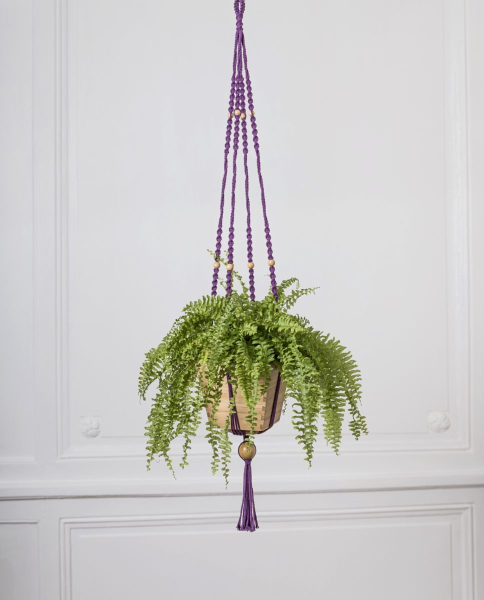 suspension plante en macramé violet