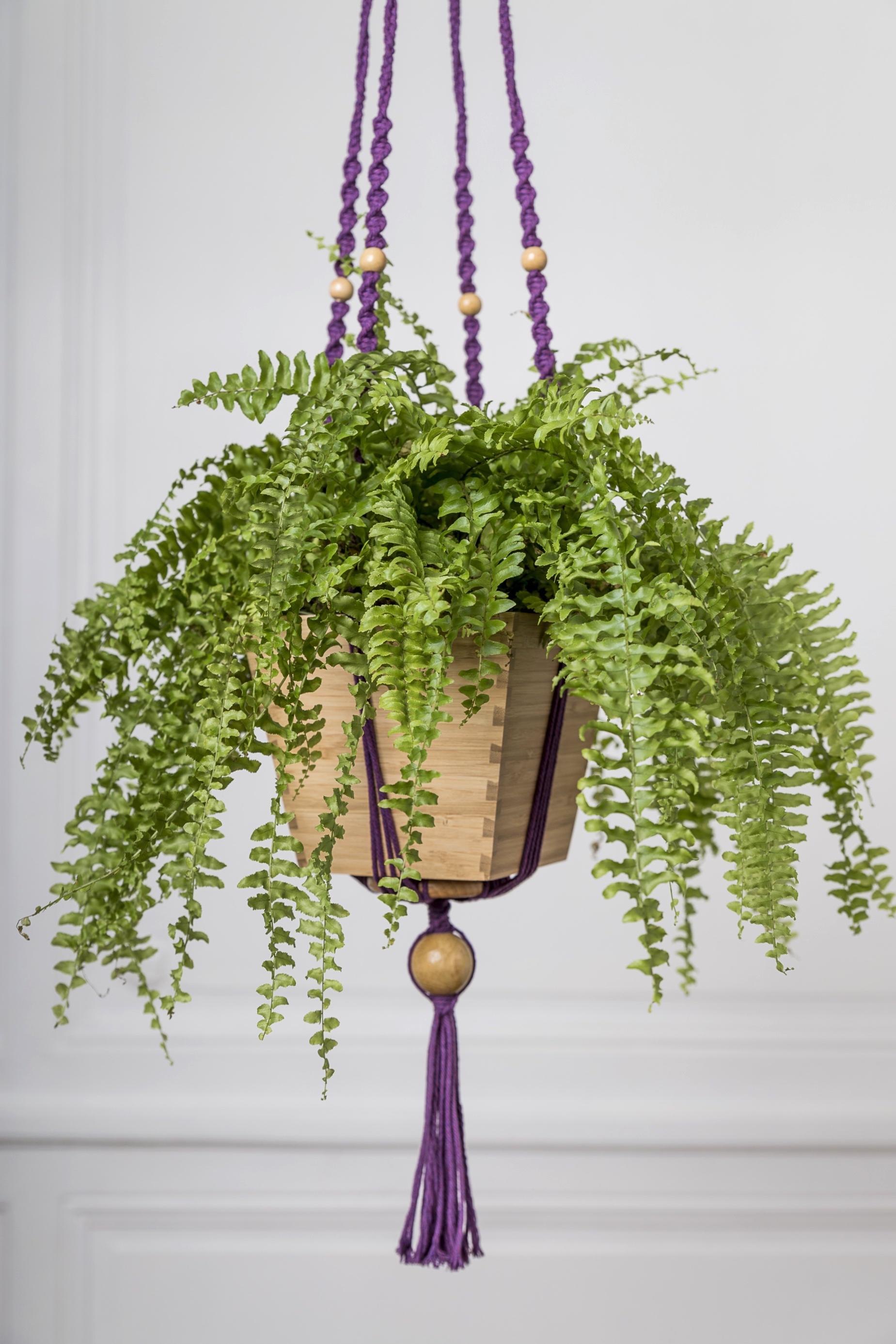 suspension pour plante en macram bymadjo tynka d co. Black Bedroom Furniture Sets. Home Design Ideas