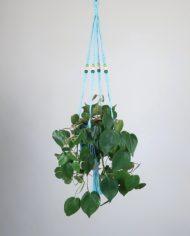 suspension.plante.bymadjo.effy