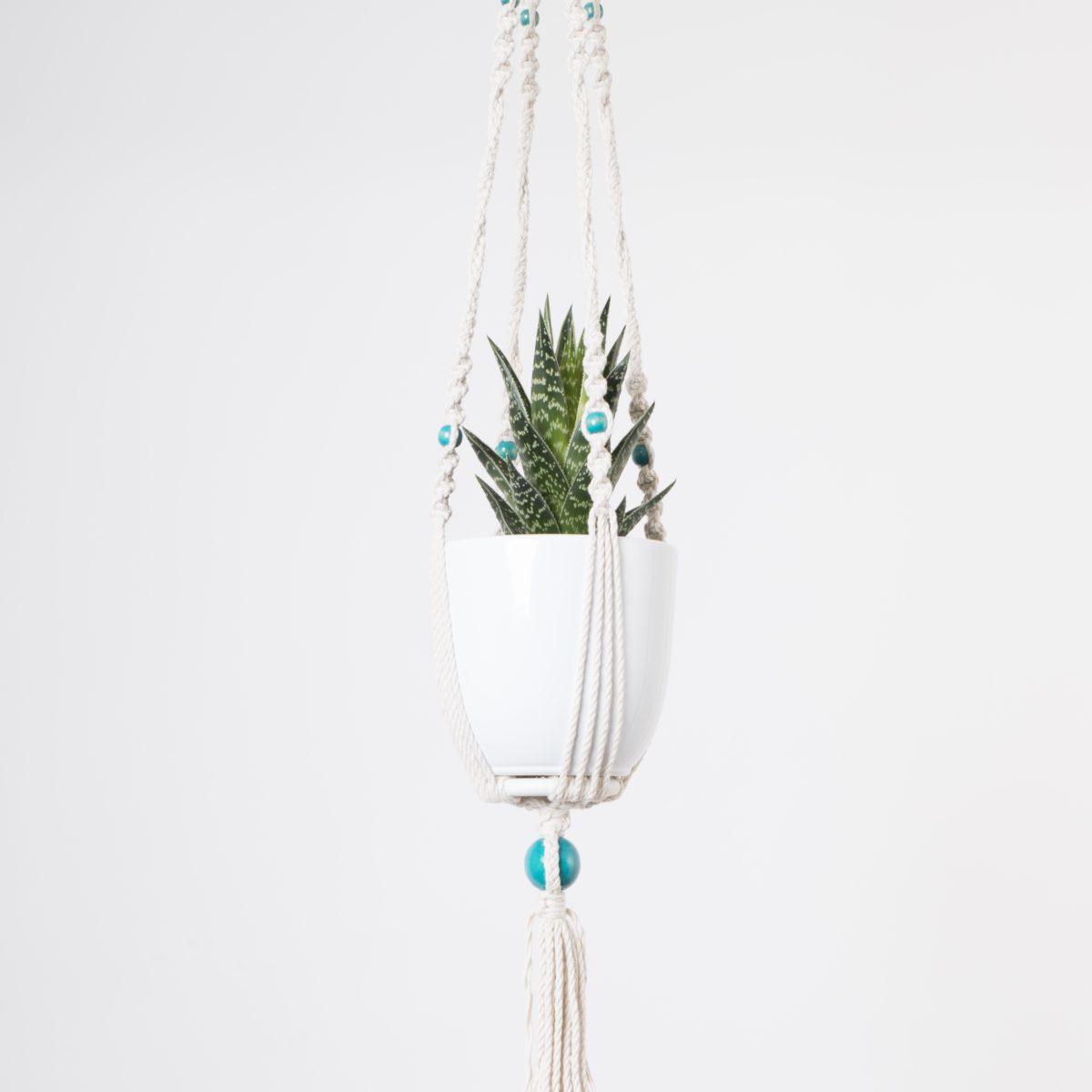 suspension macramé plante