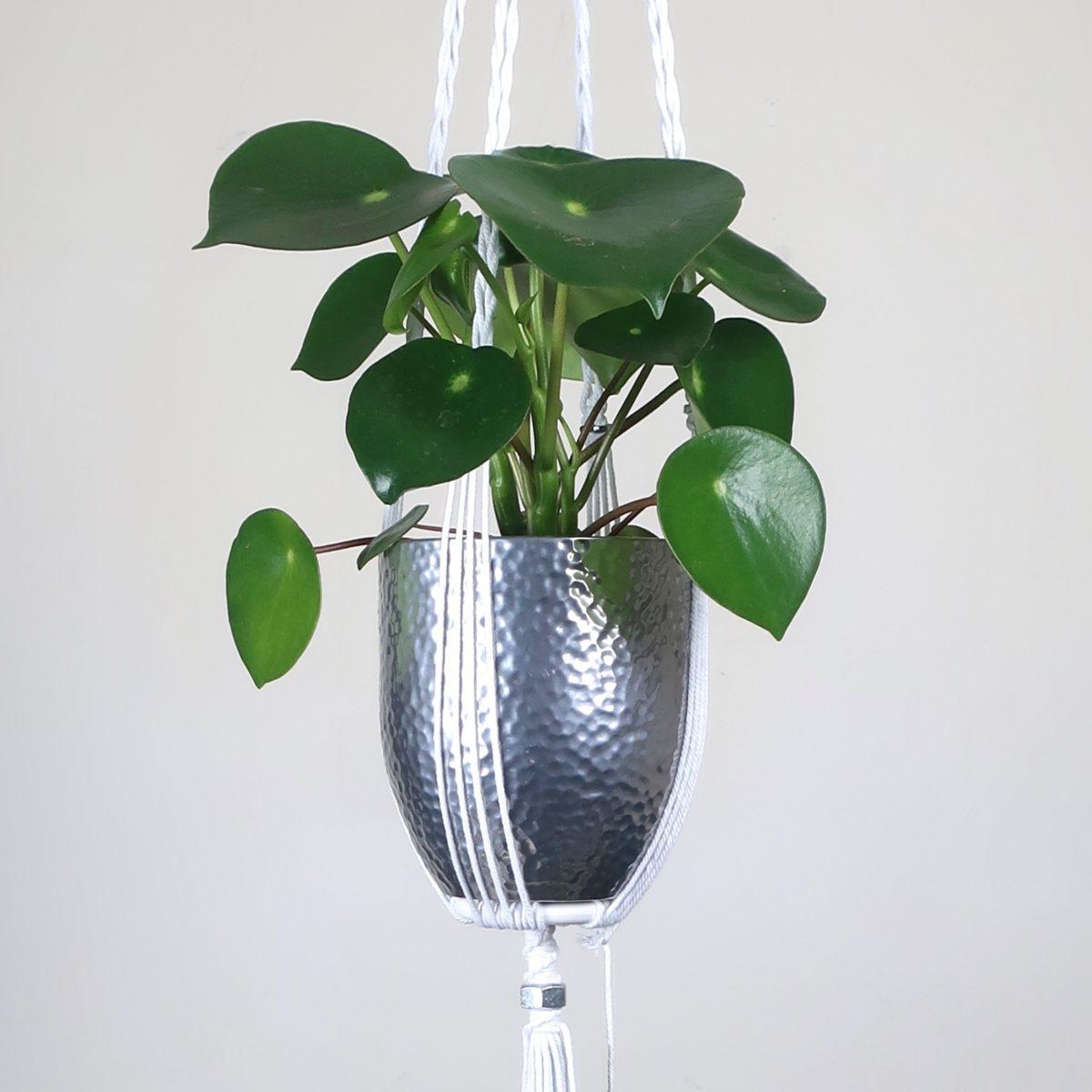 suspension macramé pour plante