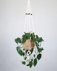 suspension.plante.bymadjo.Shanti.1
