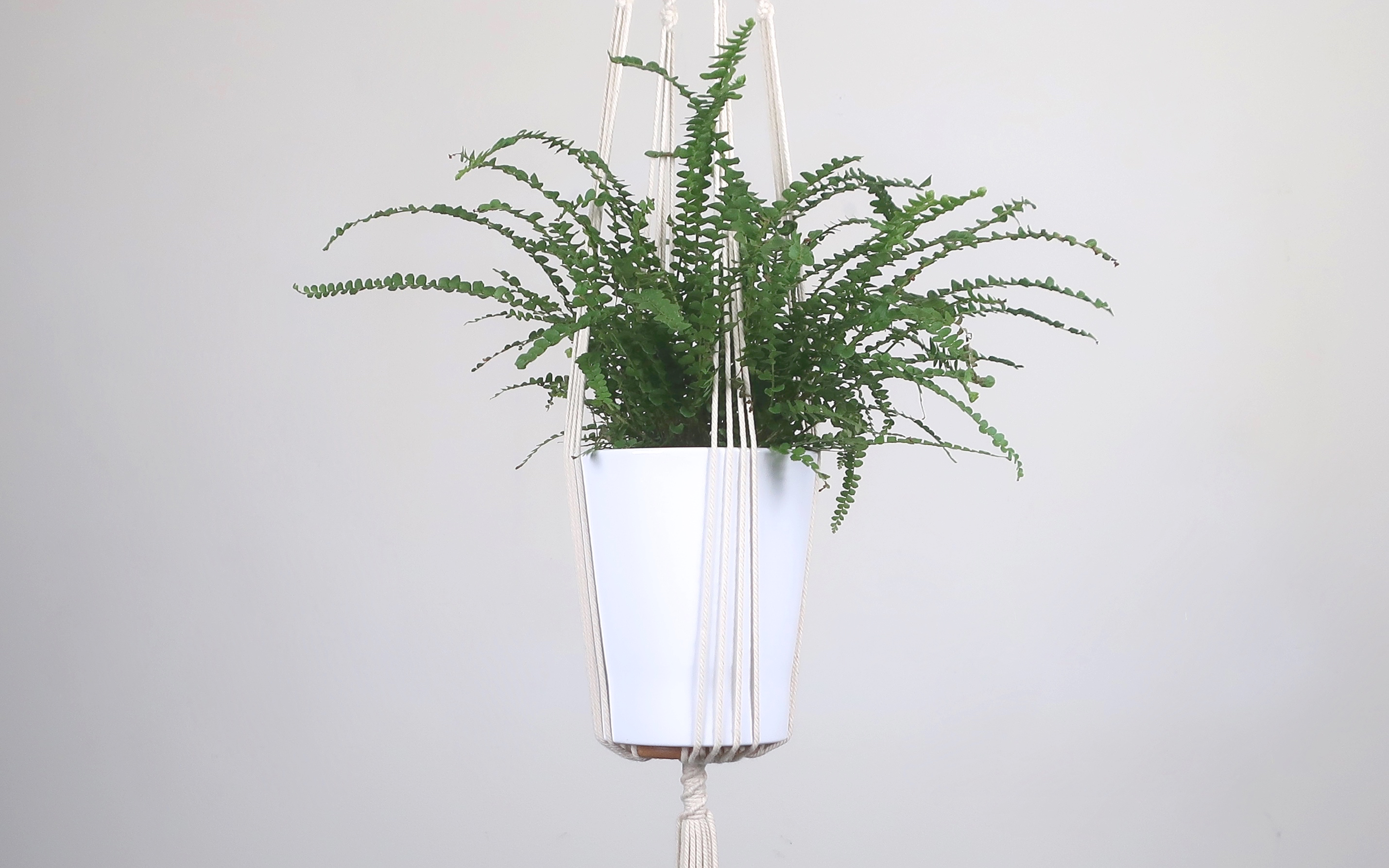 Suspension pour plante en macram bymadjo ellyne d co for Suspension pour plante interieur