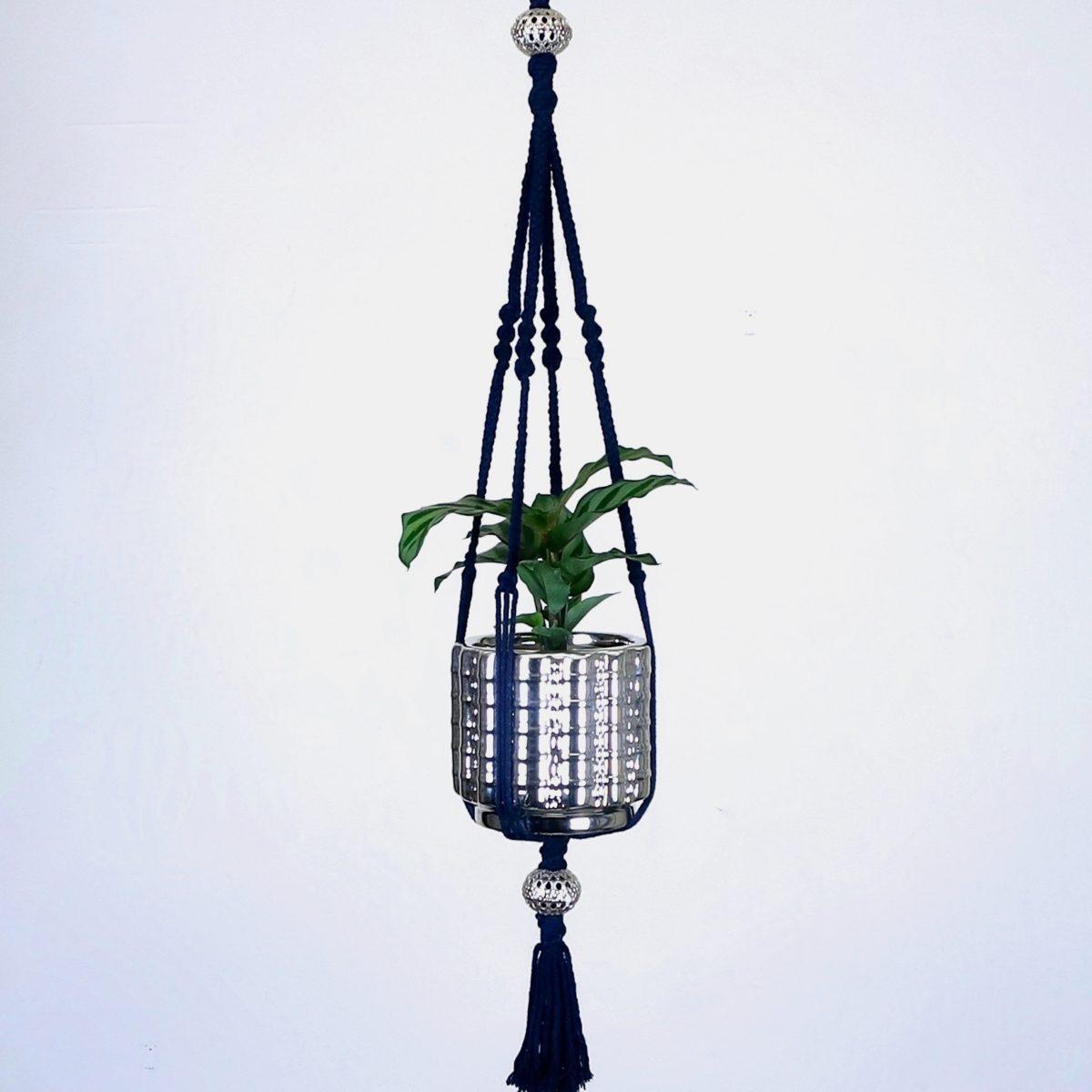 petite suspension pour plante