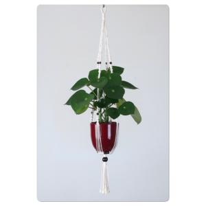 suspension en macramé pour plante