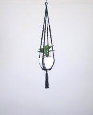 suspension.plante.bymajdjo.Algo.1