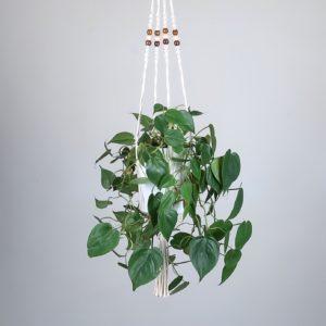 suspension pour plante en macramé